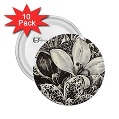 Flowers 1776483 1920 2 25  Buttons (10 Pack)  by vintage2030