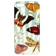 Butterfly 1064147 960 720 Apple Iphone 5 Hardshell Case With Stand
