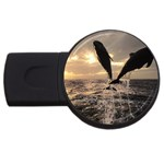 bottle nose USB Flash Drive Round (4 GB)