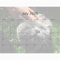Buddy Calendar 2019v2 By Aidan O connor Jul 2020