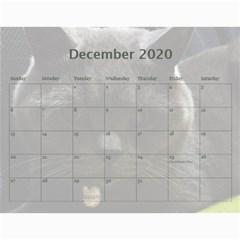 Buddy Calendar 2019v2 By Aidan O connor Dec 2020