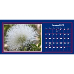 Jane My Little Perfect Desktop Calendar 11x5 By Deborah Jan 2020