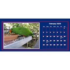 Jane My Little Perfect Desktop Calendar 11x5 By Deborah Feb 2020