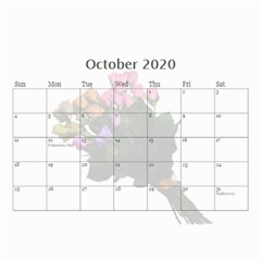 Jane Roses For You (any Year) 2020 Calendar 8 5x6 By Deborah   Wall Calendar 8 5  X 6    Docs3wc7apgl   Www Artscow Com Oct 2020