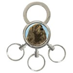 spaniel 3-Ring Key Chain