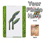 nile deck2 - Playing Cards 54 Designs