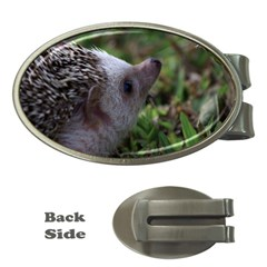 Standard Hedgehog Money Clip (Oval) from ArtsNow.com Front