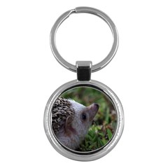 Standard Hedgehog Key Chain (Round) from ArtsNow.com Front