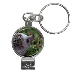Standard Hedgehog Nail Clippers Key Chain from ArtsNow.com Front