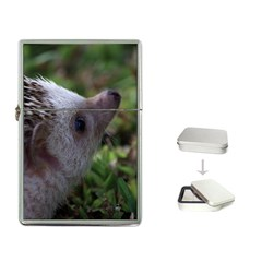 Standard Hedgehog Flip Top Lighter from ArtsNow.com Front