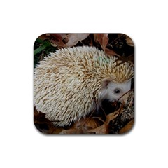 Hedgehog in Leaves Rubber Coaster (Square) from ArtsNow.com Front