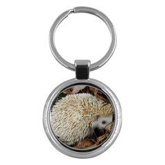 Hedgehog in Leaves Key Chain (Round) from ArtsNow.com Front