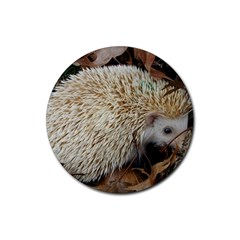 Hedgehog in Leaves Rubber Round Coaster (4 pack) from ArtsNow.com Front