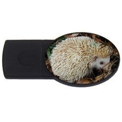 Hedgehog in Leaves USB Flash Drive Oval (4 GB) from ArtsNow.com Front