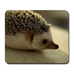 Standard Hedgehog II Large Mousepad from ArtsNow.com Front