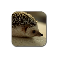 Standard Hedgehog II Rubber Square Coaster (4 pack) from ArtsNow.com Front