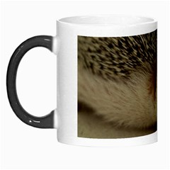 Standard Hedgehog II Morph Mug from ArtsNow.com Left