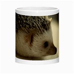 Standard Hedgehog II Morph Mug from ArtsNow.com Center