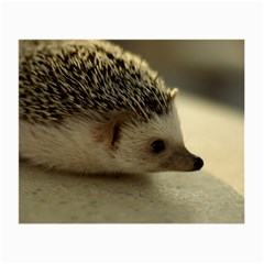 Standard Hedgehog II Glasses Cloth (Small) from ArtsNow.com Front
