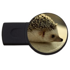 Standard Hedgehog II USB Flash Drive Round (4 GB) from ArtsNow.com Front