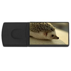 Standard Hedgehog II USB Flash Drive Rectangular (4 GB) from ArtsNow.com Front