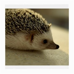 Standard Hedgehog II Glasses Cloth (Medium) from ArtsNow.com Front