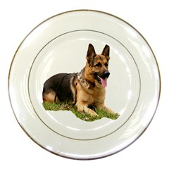 German shepherd 4 Porcelain Plate by zooicidal