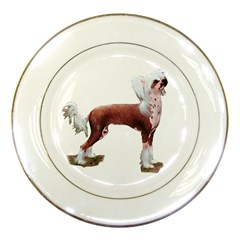 Chinese crested 1 - Porcelain Plate by zooicidal