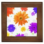 HS043_350A Framed Tile