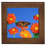 Flowerses_and_butterfly_-_Desktop_Wallpapers Framed Tile