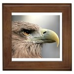 dad44013 Framed Tile