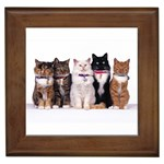 Fancy Felines Framed Tile