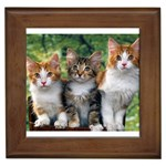 Three s a Crowd Framed Tile
