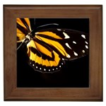 butterfly-pop-art-print-11 Framed Tile