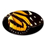 butterfly-pop-art-print-11 Magnet (Oval)