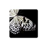 butterfly-pop-art-print-13 Magnet (Square)