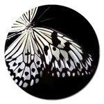 butterfly-pop-art-print-13 Magnet 5  (Round)