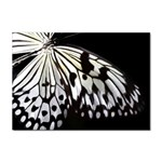 butterfly-pop-art-print-13 Sticker A4 (10 pack)