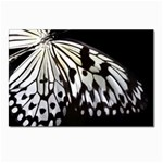 butterfly-pop-art-print-13 Postcard 4 x 6  (Pkg of 10)
