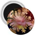 abstract-flowers-984772 3  Magnet