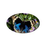 butterfly_4 Sticker Oval (10 pack)