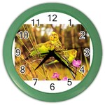 2-95-Animals-Wildlife-1024-028 Color Wall Clock