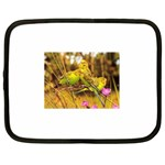 2-95-Animals-Wildlife-1024-028 Netbook Case (Large)