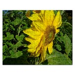 flowers_30 Jigsaw Puzzle (Rectangular)
