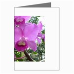 wallpaper_19193 Greeting Cards (Pkg of 8)