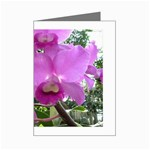 wallpaper_19193 Mini Greeting Cards (Pkg of 8)