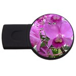 wallpaper_19193 USB Flash Drive Round (2 GB)