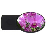 wallpaper_19193 USB Flash Drive Oval (2 GB)