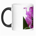 wallpaper_19193 Morph Mug