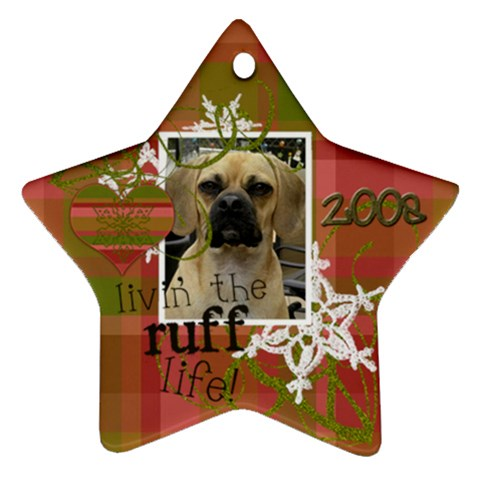 Sadie s Christmas Star 2009 By Maureen Bayless   Ornament (star)   22246vrt9vzy   Www Artscow Com Front